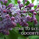 TIME TO SAY GOOD BYE by Heidi Mooney-Hill