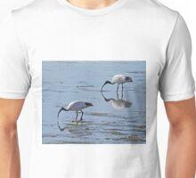 Australian White Ibis, Kangaroo Island, South Australia Unisex T-Shirt