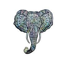 Elephant Pen&Ink Doodle Photographic Print