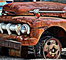 Old Rusty Ford Truck by Sheryl Gerhard