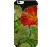 Complementary colors in the lily pad pond iPhone Case/Skin