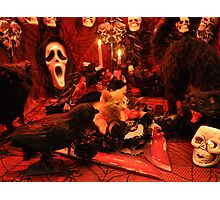 Di Milo ~ The Scream ~ Gothic Kitty Cat Kitten in Halloween Horror House Photographic Print