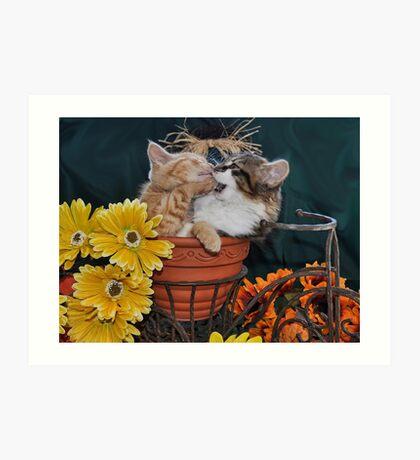 Venus & Di Milo ~ Foot in Mouth ~ Kitty Cat Kitten in Fall Colours Art Print