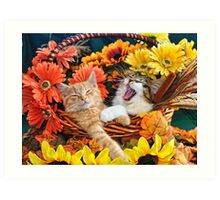 Venus & Di Milo ~ Cute Kitty Cat Kittens in Fall Colors Art Print