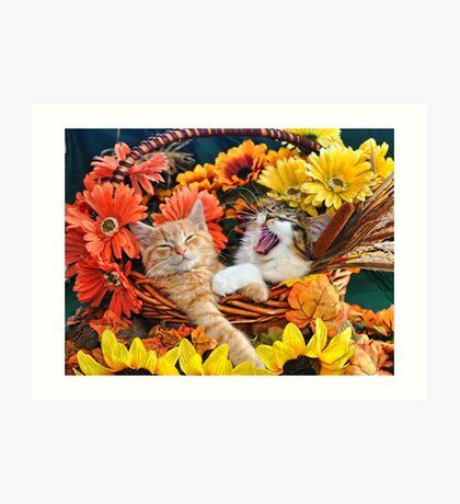 Venus & Di Milo ~ Cute Kitty Cat Kittens in Fall Colors Art Print