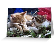 Venus & Di Milo ~ Contemplation ~ Cute Winter Kitty Cat Kittens Greeting Card