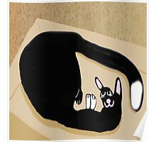 Cat comfort Comes In A Box Poster