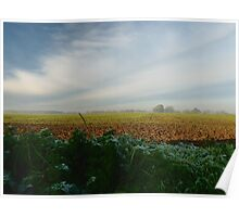 Rural Landscape on frosty morning. Poster