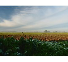 Rural Landscape on frosty morning. Photographic Print