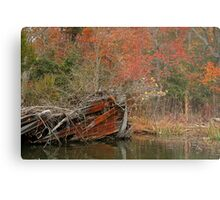 Down But Not Out Metal Print