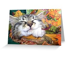 Venus ~ Cute Kitty Cat Kitten Sleeping in a Basket ~ Fall Colors Greeting Card