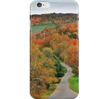 Doe Run Valley iPhone Case/Skin