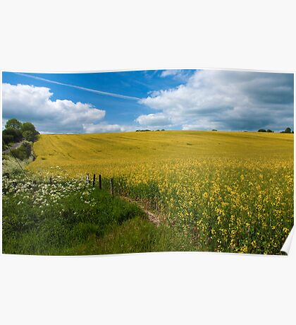 A field of oil Poster