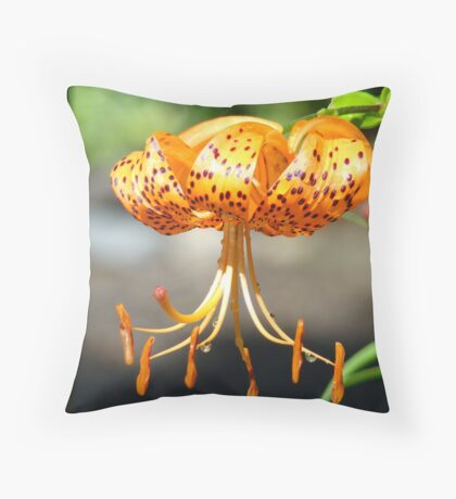 Floral art Orange Tiger Lily Flowers Lilies Throw Pillow