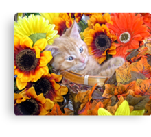 Di Milo ~ Cute Kitty Cat Kitten in Decorative Fall Flowers Canvas Print