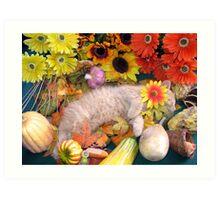 Di Milo ~ Peaceful Dreams ~ Fall Kitten Art Print