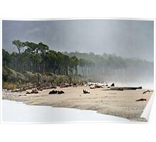bruce bay  south westland  nz Poster