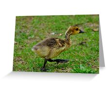 I'm coming mother Greeting Card