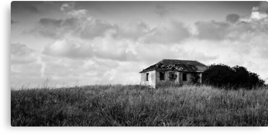 abandoned in grasses by Victor Bezrukov