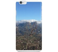 The Promise of Spring iPhone Case/Skin