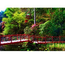 Portmeirion - Japanese garden, Wales Photographic Print
