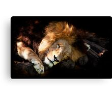 Hard Life for a King Canvas Print