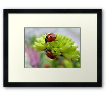 If you need a helping hand.... Framed Print