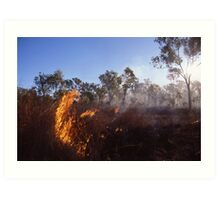 Outback Wild Fire Art Print