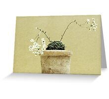 Pastel in the Garden Greeting Card