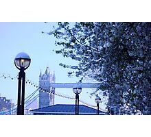 Bridge in spring Photographic Print