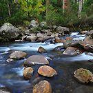 """ A River Somewhere "" by helmutk"