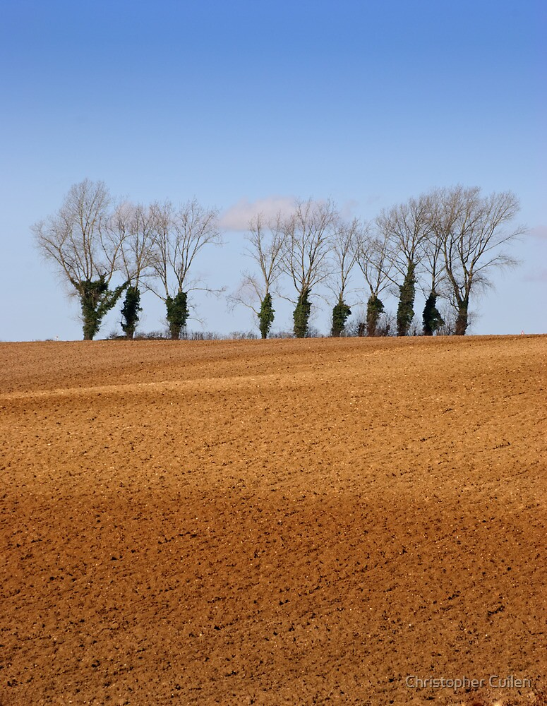 Suffolk vista by Christopher Cullen