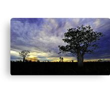Sunset behind Boab Trees at Fitzroy Crossing Canvas Print
