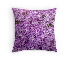 Ornithogalum Purple Spray Throw Pillow