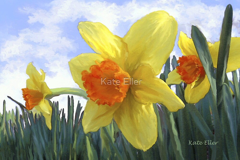 Sunlight on the Daffodils by Kate Eller