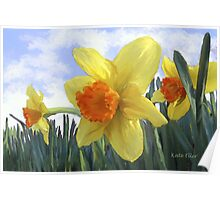 Sunlight on the Daffodils Poster