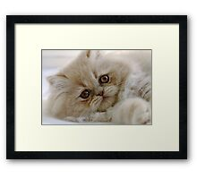 You had me at 'meow'  Framed Print