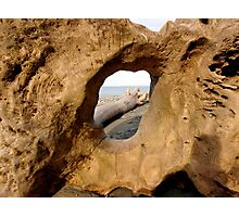 Dungeness Driftwood Photographic Print