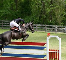 Grand Prix Horse and Rider on Course by chrstnes73