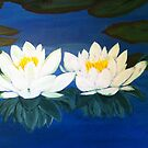 Lotus / water lilies by maggie326