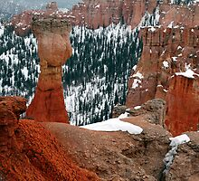 bryce canyon in utah by milena boeva