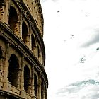 The Coliseum - Rome, Italy by Lori  Heiss