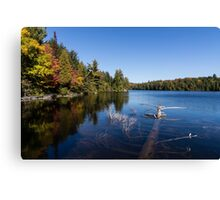 Of Fall and Fallen Giants Canvas Print