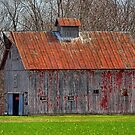 Rusty Roof by Sheryl Gerhard