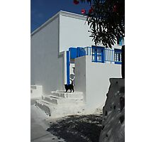 black cat at front of a white house in santorini Photographic Print