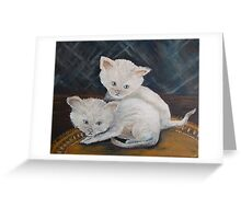 Kittens so CUTE! Greeting Card