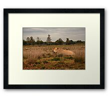 Its a Cow Framed Print