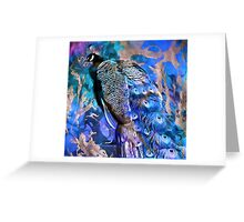 For the Love of Peacocks... Greeting Card