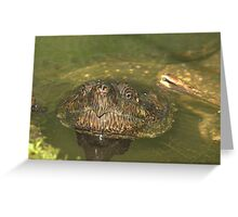 quietly curious Greeting Card