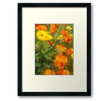 """Orange glow"" Framed Print"